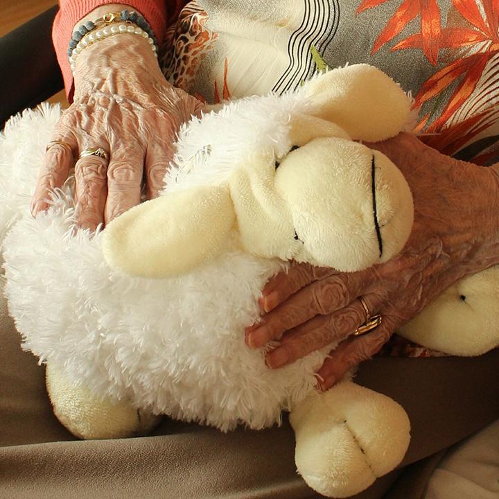 高齢者を支える介護職